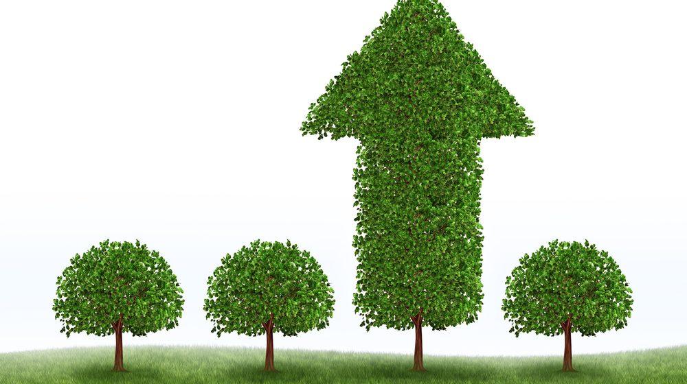 dati green bond